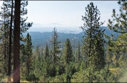 Chewelah Valley Land Trust gets $676K grant