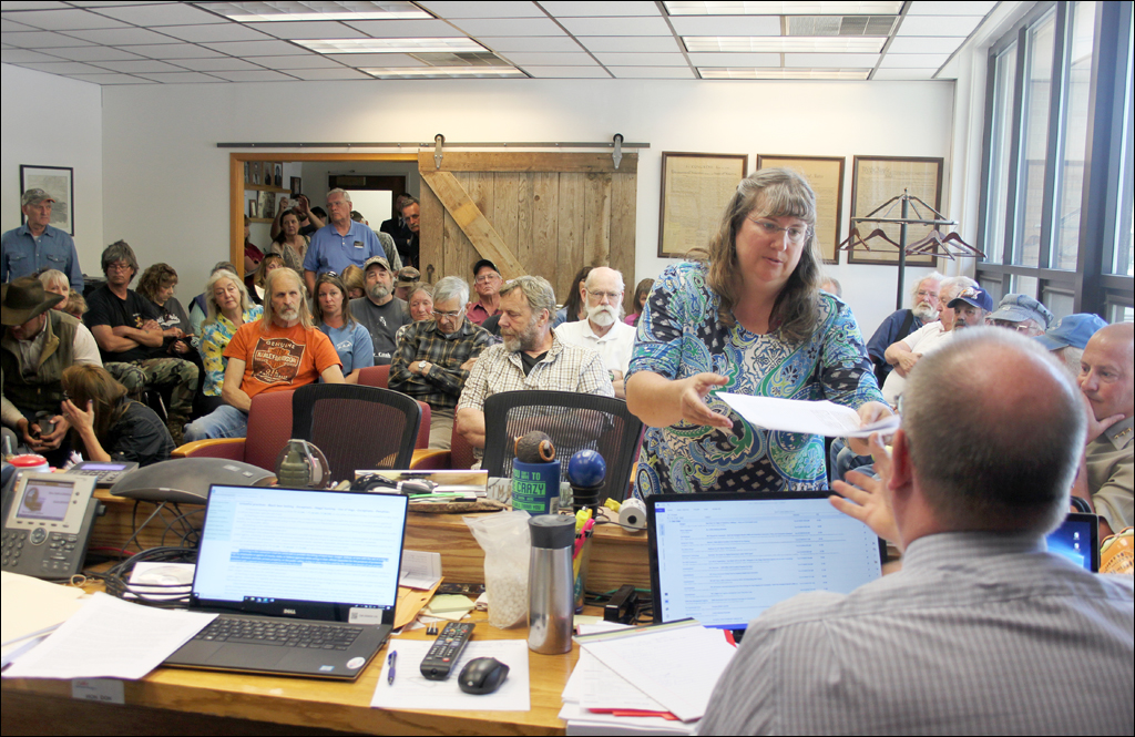Commissioner Dashiell: Cougar problem in county has reached  'critical mass'