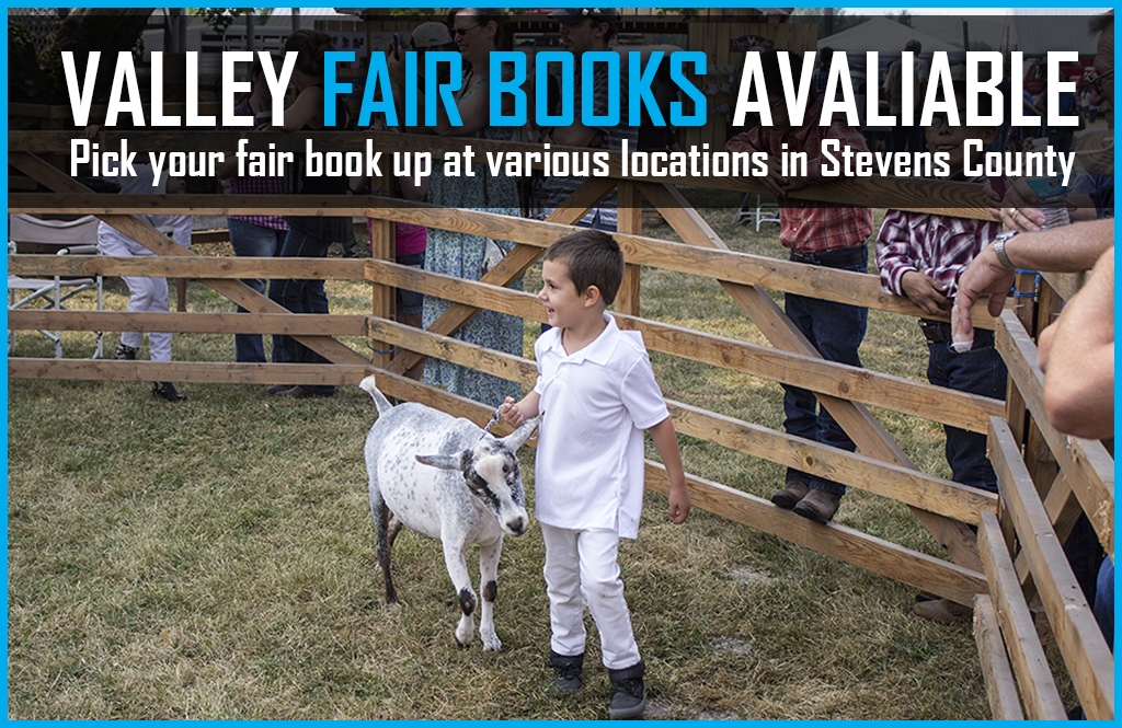 Valley Fair Books now available at various locations