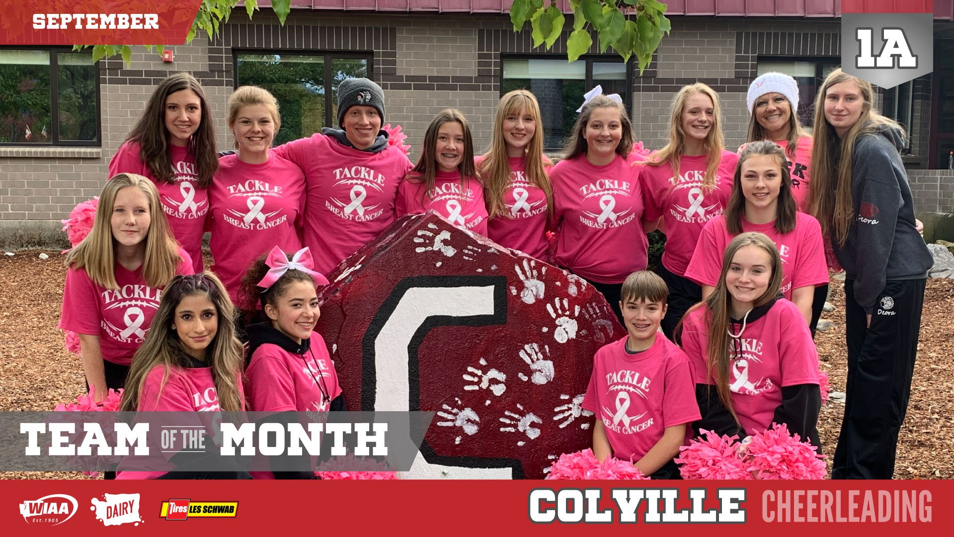 Colville Cheerleading named WIAA Team of the Month