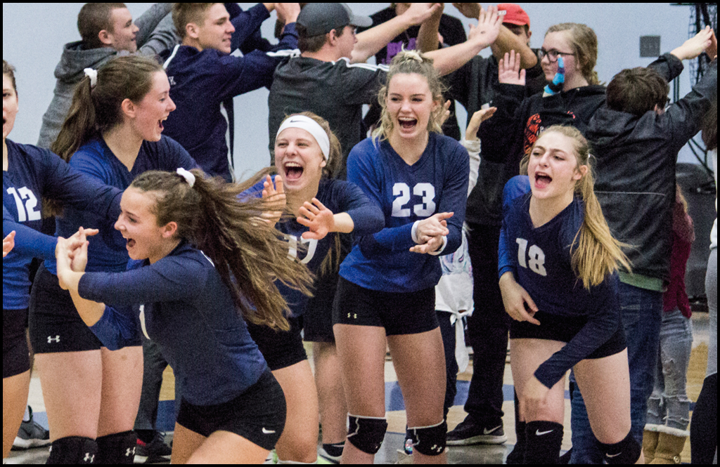 VOLLEYBALL: Lady Cougars clinch berth at state tournament with fourth place finish at districts