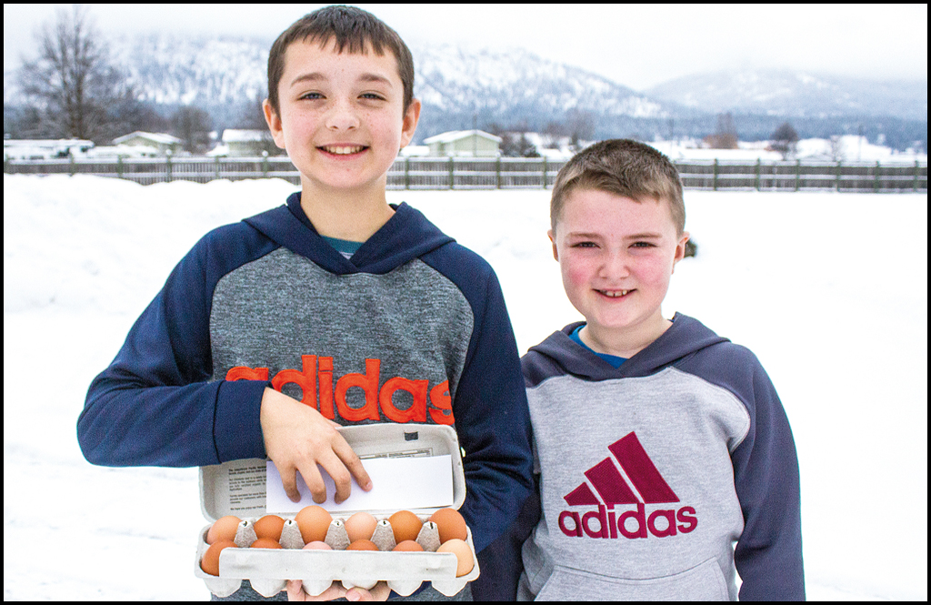 EGG EMPIRE: The Ewens Brothers begin business to sell organic eggs to community members