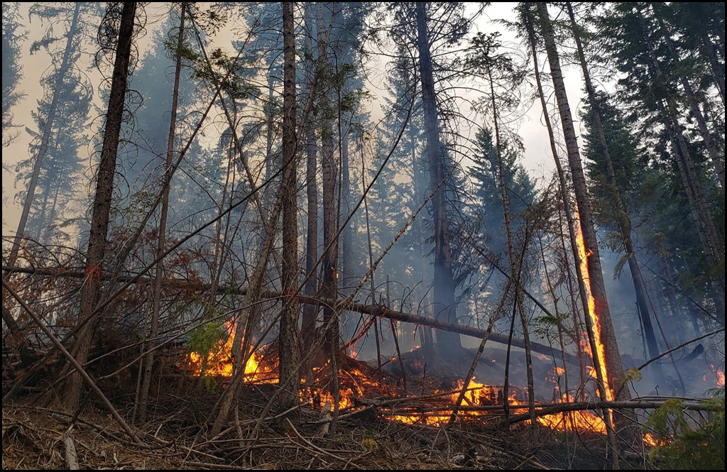 North Mill Creek Fire outside of Colville grows to 500 acres