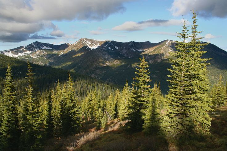 Forest Service releases revised Land Management Plan for CNF