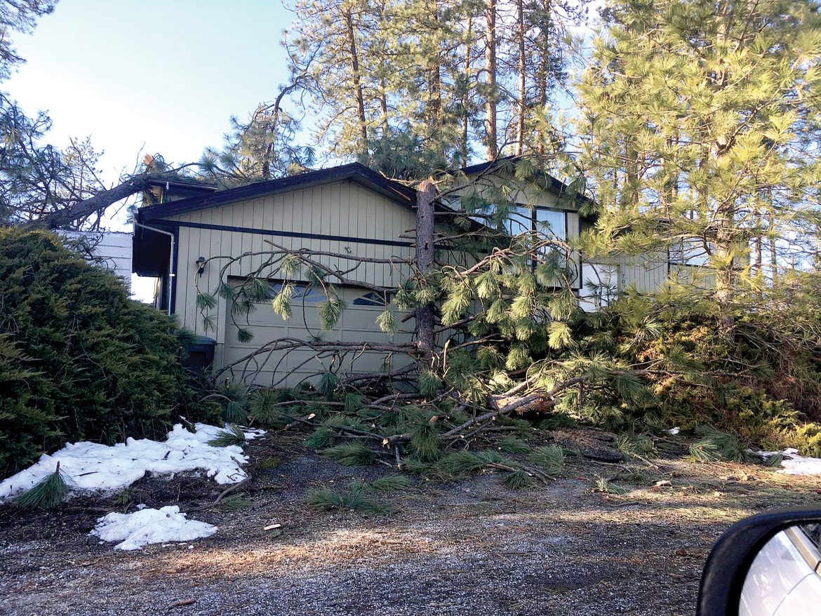 Power restored to all customers after last week's windstorm, Avista says